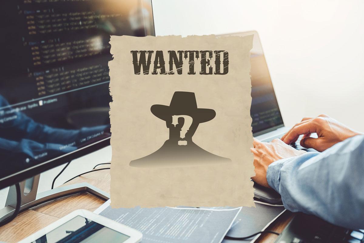 Offre d'emploi - Développeur web à Pixao